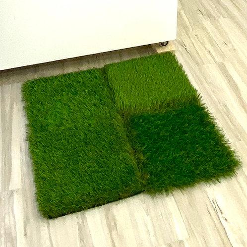Little Grass Carpet-turf scrap
