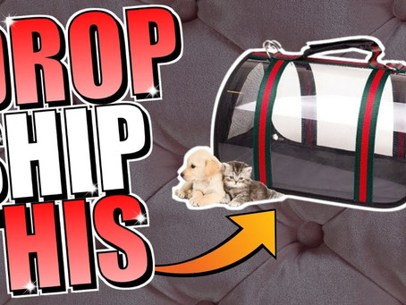 Dropshipping Products For Aliexpress To Ebay Dropshipping April 03 2021