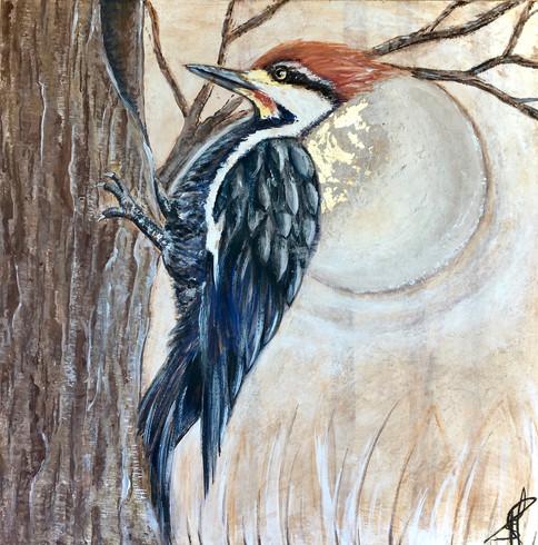 woodpecker - fresco