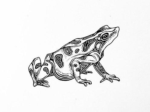 """Golden Frog Print 11x14"""""""