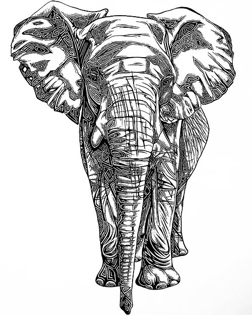 Elephant Folding Card(s)