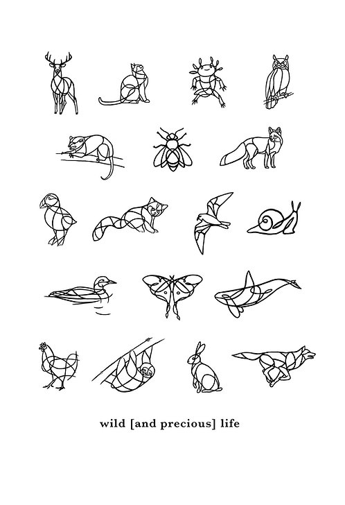 "Wild [and precious] Life Print 18x24"""