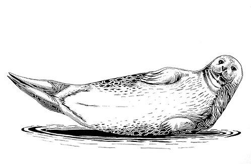 Seal Folding Card(s)