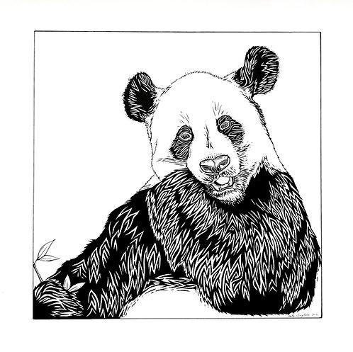 "Panda Print 18x24"""