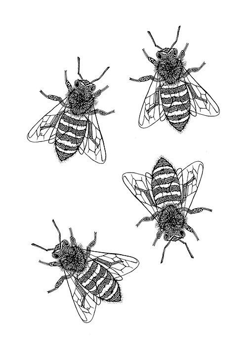 "Bee Hive Print 18x24"""