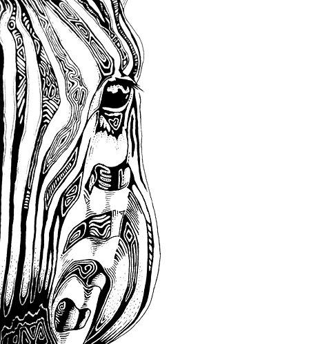 """Zebra Print 11x14"""""""