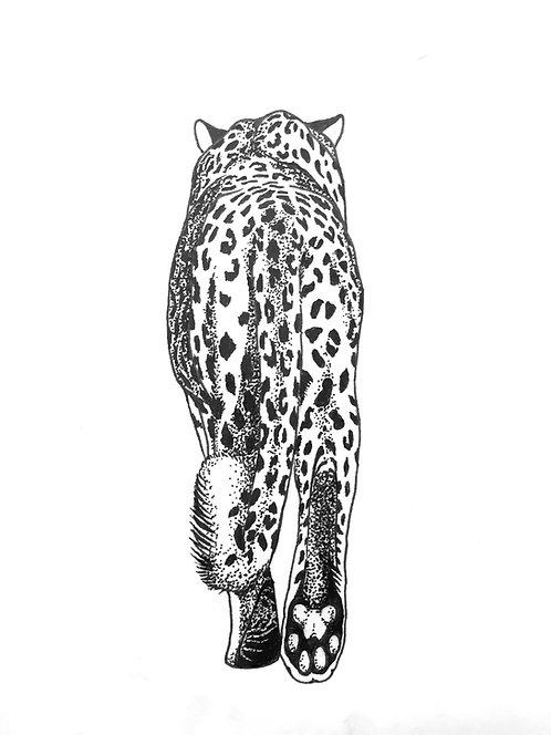"""Leopard Print 18x24"""""""