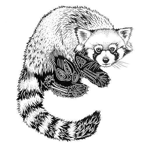 """Red Panda Print 11x14"""""""