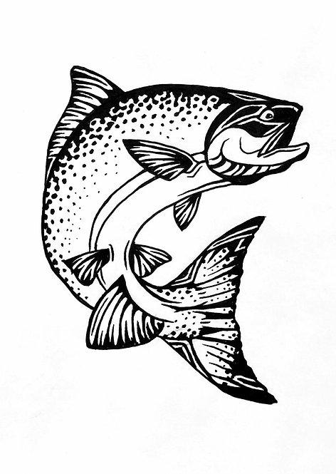 Salmon Folding Card(s)