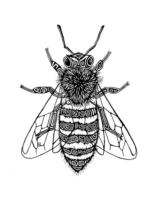 Honey Bee Print 11x14""