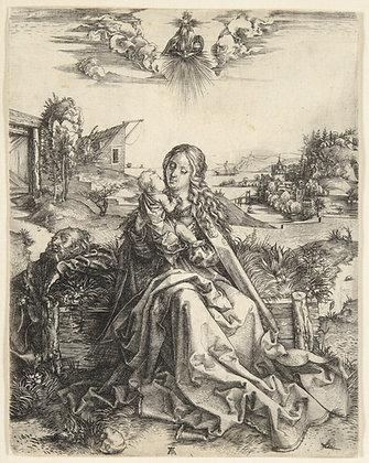 Albrecht Dürer - The Virgin with the Dragonfly