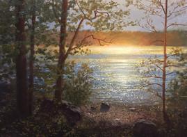 Sunflare off Walden Pond