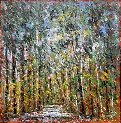 Samir Sammoun - The Green Forest Park Rhone