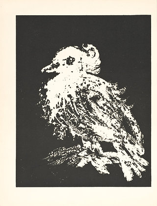 Pablo Picasso - The Small Dove
