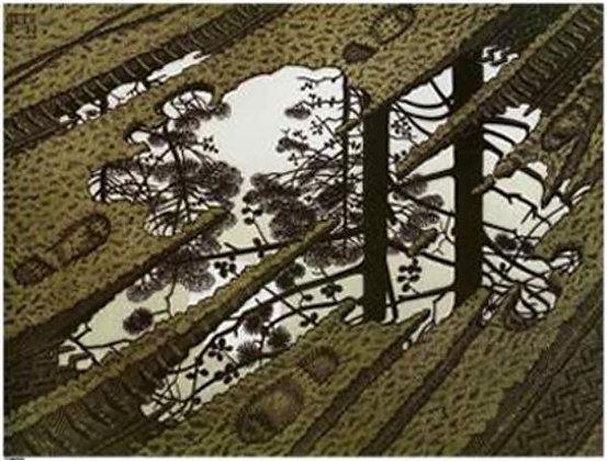 Maurits Cornelis Escher - Puddle