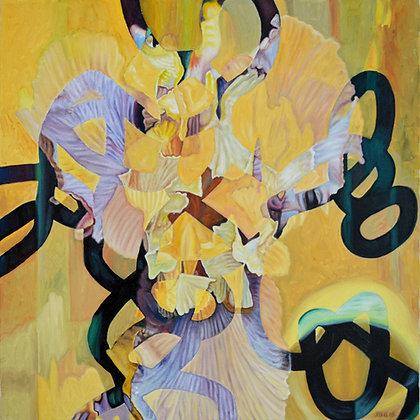 John Gentile - Bearded Iris 2