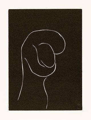 Henri Matisse - ...EMPORTÉS JUSQU' AUX CONSTELLATIONS...