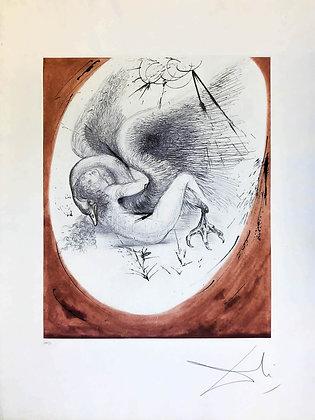 Salvador Dalí - Leda and Swan