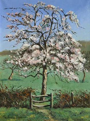 Paulémile Pissarro - Le Poirier en Fleurs