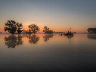 Weerspiegeling bomen in water met zonsopkomst