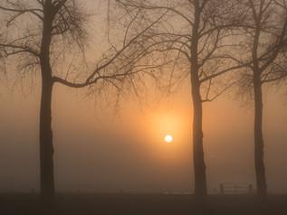 Mooie zonsopkomst in de mist