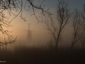 Een mistige ochtend bij De Marsch(molen) in Lienden, Betuwe