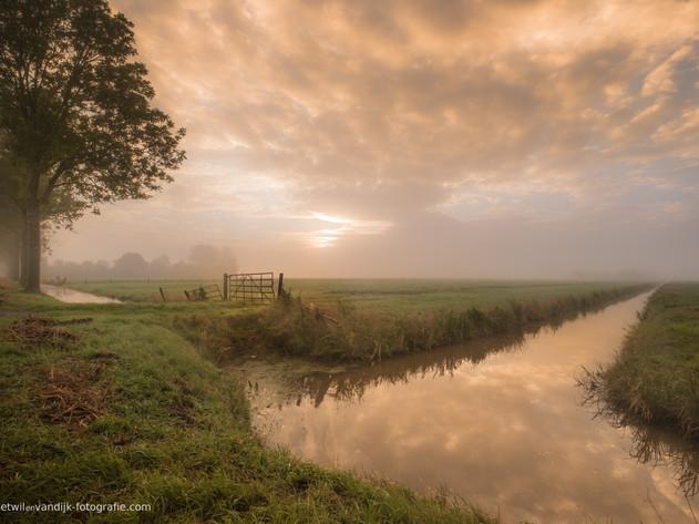 Hollands landschap: Betuwse polder met weiland en sloot