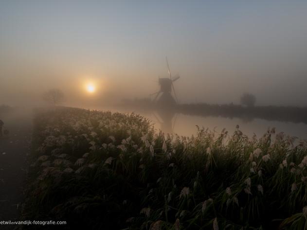 Zonsopkomst bij molen Kinderdijk