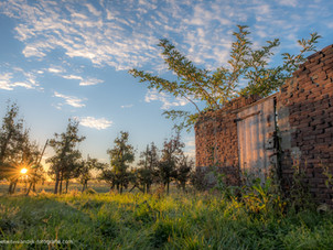Vervallen schuurtje (ruïne) in fruitboomgaard