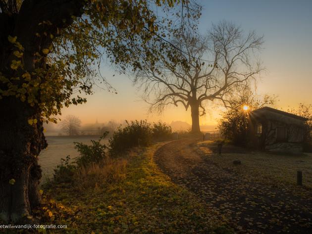 Zonsopkomst bij schuurtje en oude boom Ravenswaaij Gelderland