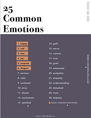 25 emotions.png