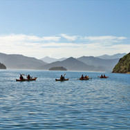 Kayakers on Picton Harbour-2.JPG