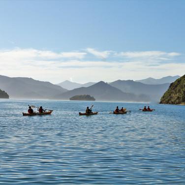 Kayakers on Picton Harbour-2.JPG