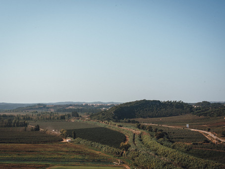 A Guide to Weddings in Estremadura and Ribatejo from a Portugal Wedding Planner