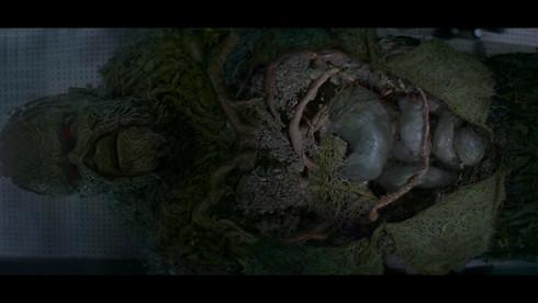 swampthing9.jpg