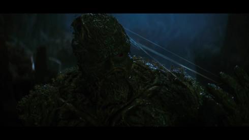 swampthing7.jpg