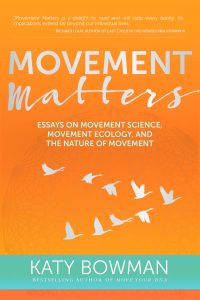 Movement Matters: Essays on Movement