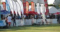 Cricket-sixes-home-oage-iimage-3.jpg