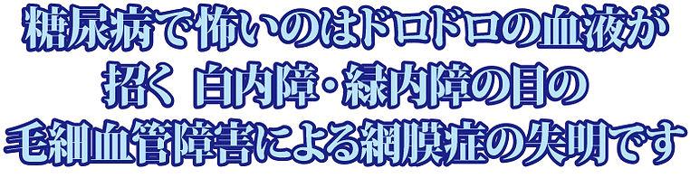 to_06.jpg