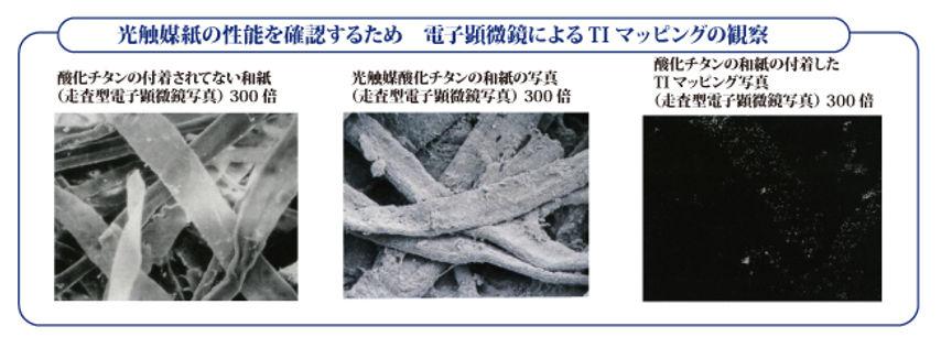 顕微鏡の図.jpg
