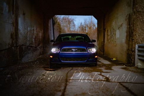 ST Mustang