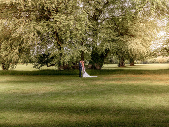 bride-and-groom-kissing-under-large-tree-at-bryn-meadows-in-south-wales.jpg