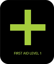 FIRST AID LEVEL 1.png