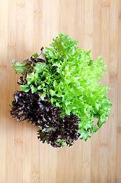 fancy-lettuce.jpg