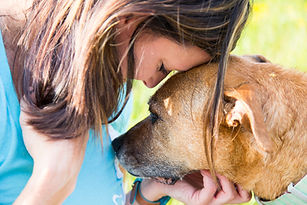 Pet Home Health and Hospice