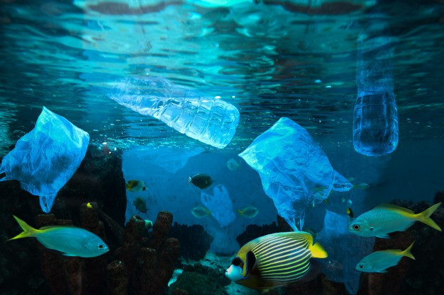 Various fish swimming in the sea covered with plastic.