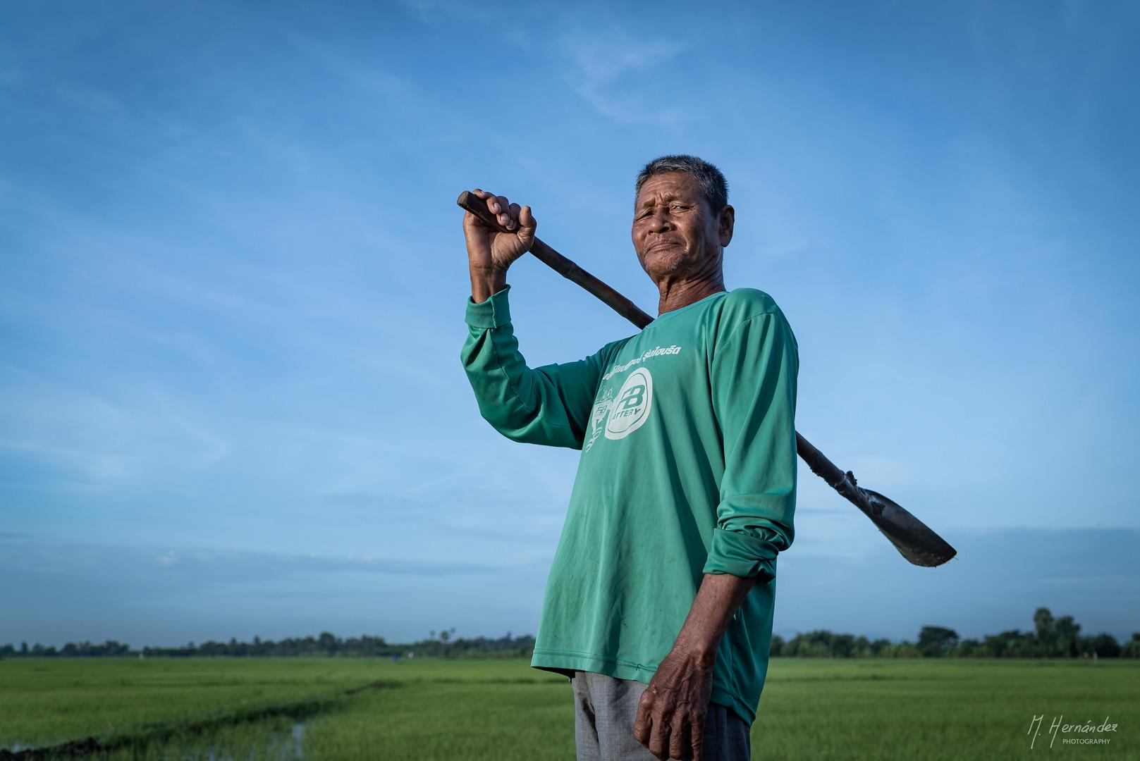 Rice Farmer at Petchaburi, Thailand. 2016