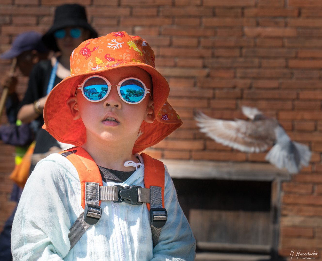 Little Cool Tourist