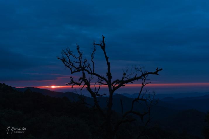 Sunrise at Mae Kampong, Thailand. 2017