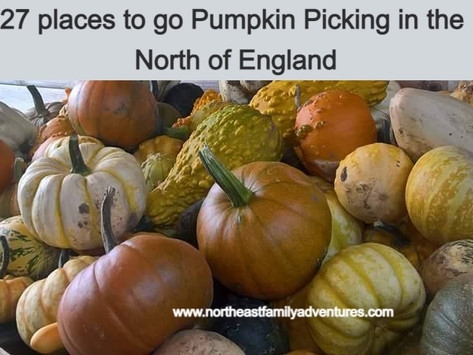 27 places to go Pumpkin Picking in the North of England